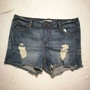 Bluenotes Distressed Mid-Rise Jean Shorts